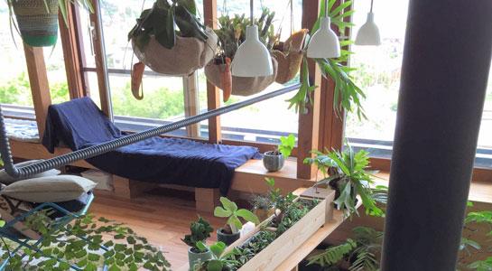 植物・ガーデン用品販売