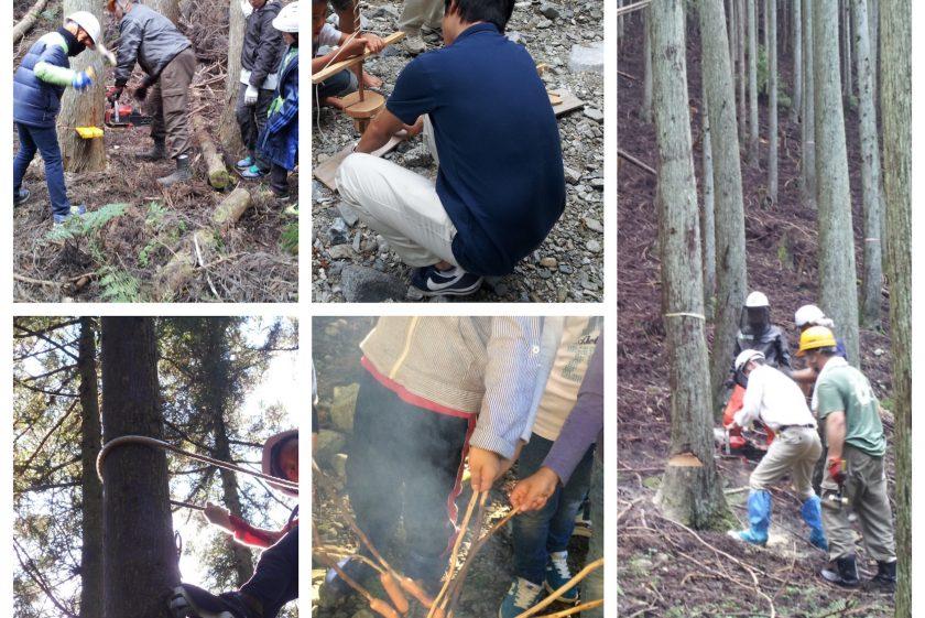 11/6(日) 木こり体験ツアー開催。